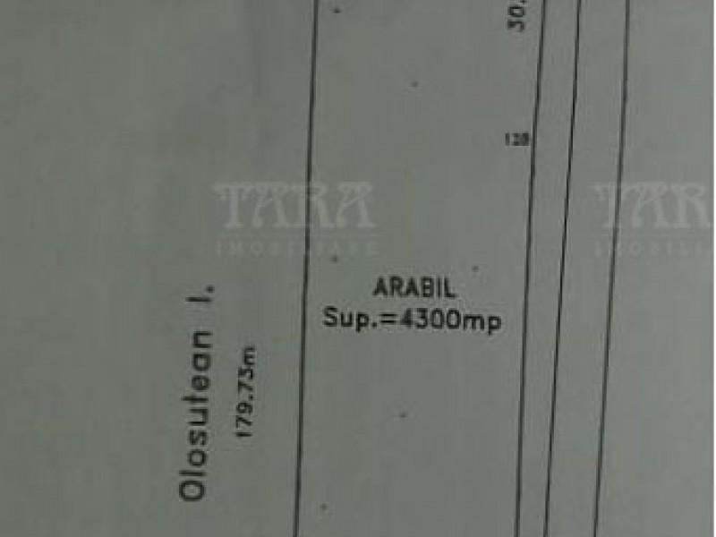 Teren 400mp, Padureni (Chinteni)