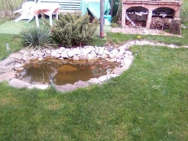 Casa Cu 4 Camere Dambul Rotund ID V517319 5
