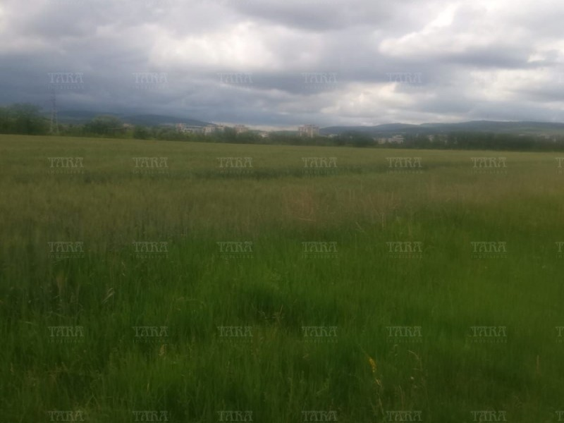Teren 18000mp, Gheorgheni